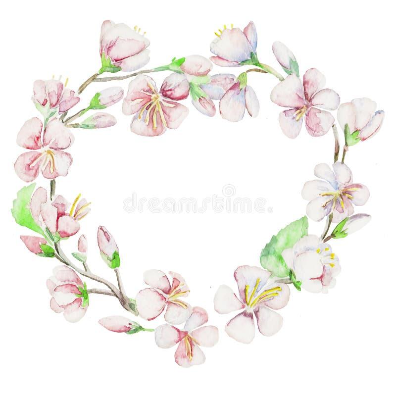 Άνοιξη, κεράσι, μήλο, λουλούδια Αντικείμενο Watercolor διανυσματική απεικόνιση
