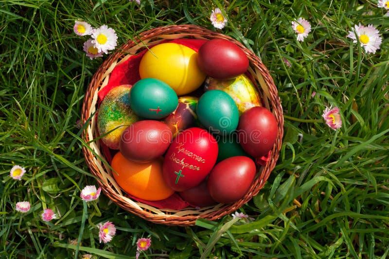 άνοιξη λουλουδιών αυγών  στοκ φωτογραφία με δικαίωμα ελεύθερης χρήσης