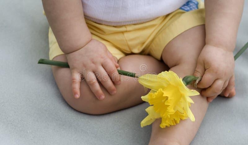 άνοιξη μωρών στοκ φωτογραφία