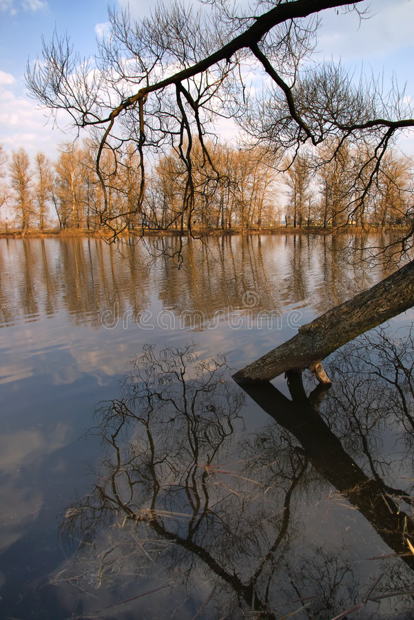 Download άνοιξη πλημμυρών στοκ εικόνες. εικόνα από χρώμα, ρεύμα - 2226878