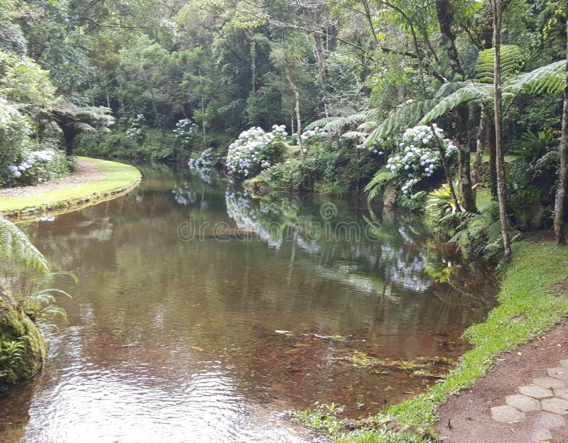 Άνοιξη ποταμών ομορφιάς στοκ εικόνα