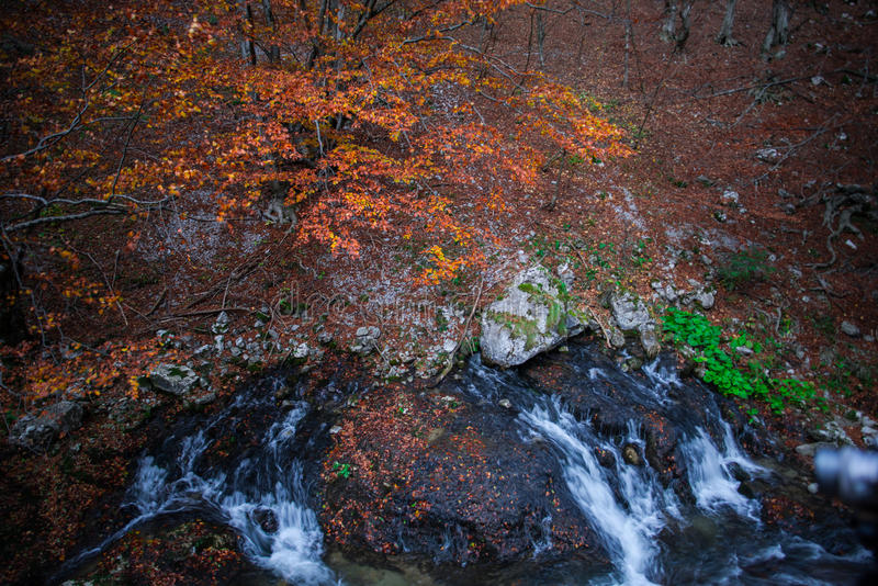 Άνοιξη ποταμών Subteran στοκ εικόνες