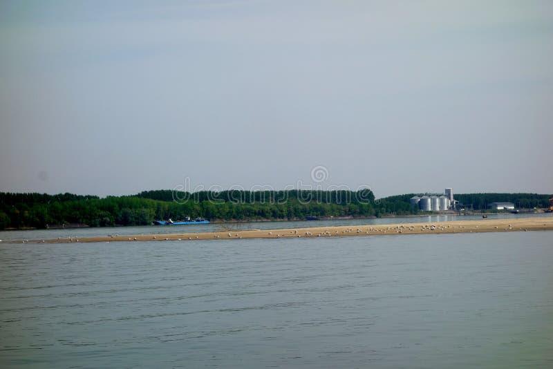 Άνοιξη στον ποταμό Δούναβη στοκ φωτογραφίες