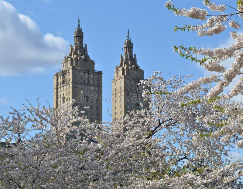 Άνοιξη στο Central Park, Μανχάταν, Νέα Υόρκη. στοκ φωτογραφίες