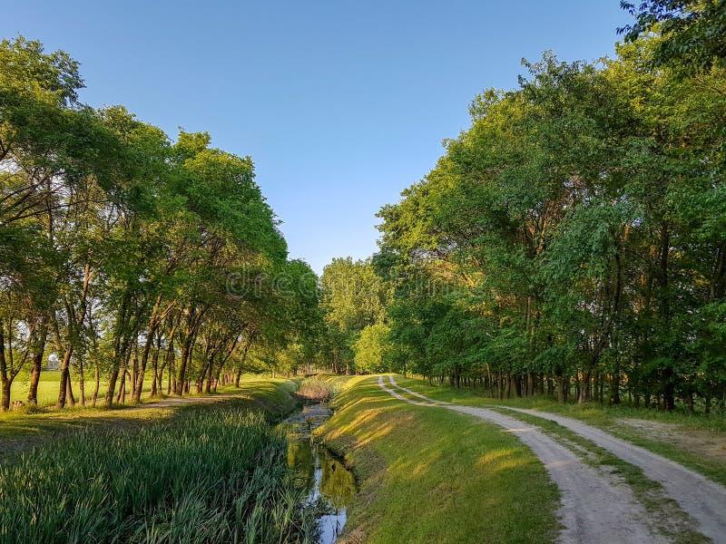 Άνοιξη τοπίων πράσινο και μπλε χρώμα χλόης πορειών ουρανού δέντρων νεφελώδες στοκ εικόνες