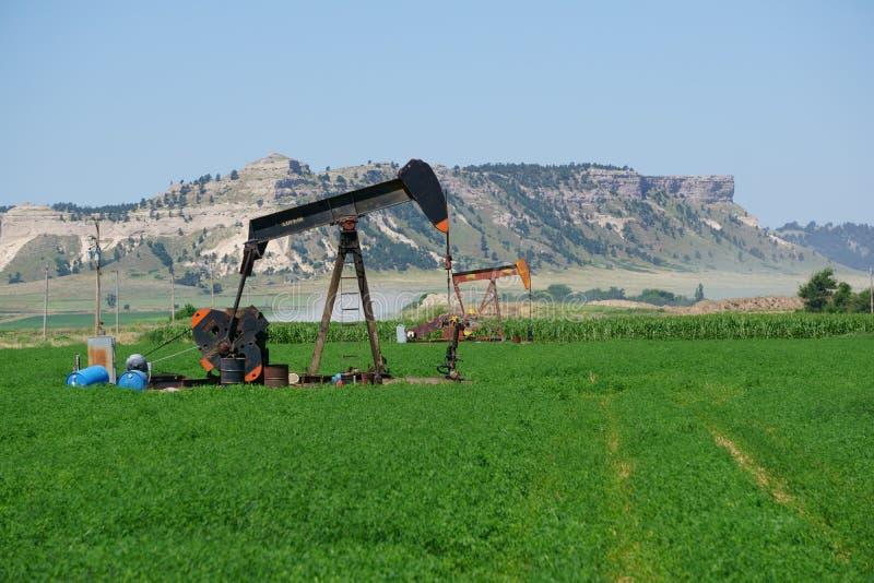 Άντληση πετρελαιοπηγών σε έναν αγροτικό τομέα της Νεμπράσκας στοκ εικόνα