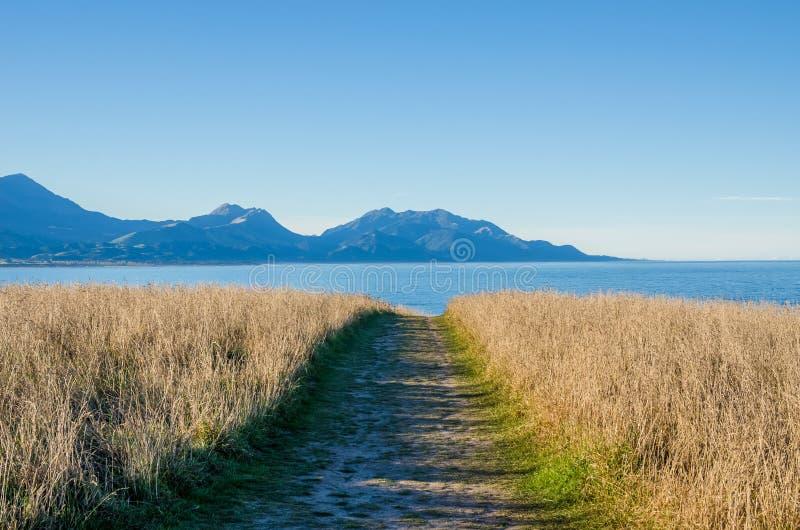 Άποψη από την άποψη Kean σημείου, Kaikoura Νέα Ζηλανδία στοκ φωτογραφία