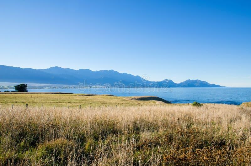 Άποψη από την άποψη Kean σημείου, Kaikoura Νέα Ζηλανδία στοκ φωτογραφίες με δικαίωμα ελεύθερης χρήσης