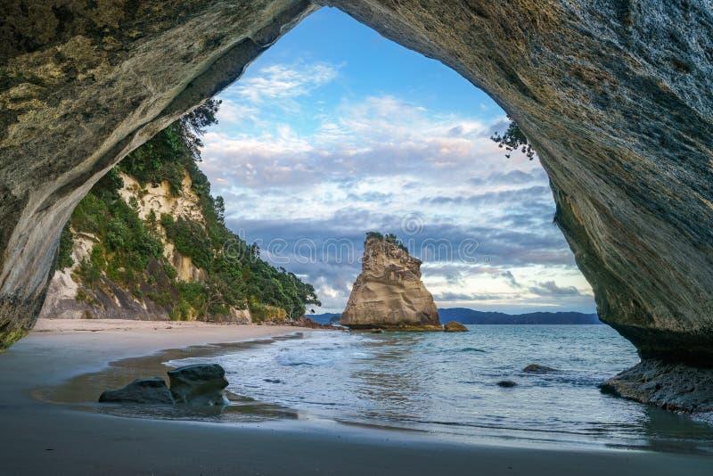Άποψη από τη σπηλιά στον όρμο καθεδρικών ναών, coromandel, Νέα Ζηλανδία 23 στοκ εικόνες