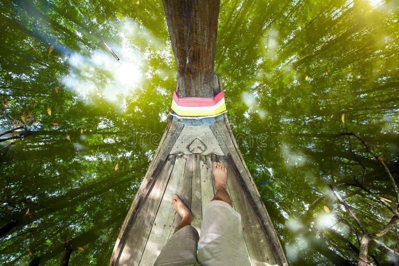 Άποψη από το δάσος μαγγροβίων, επαρχία Krabi, Ταϊλάνδη στοκ εικόνες με δικαίωμα ελεύθερης χρήσης