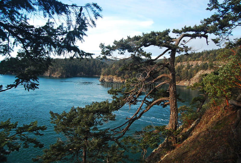 Άποψη από το κρατικό πάρκο περασμάτων εξαπάτησης, Ουάσιγκτον στοκ εικόνα με δικαίωμα ελεύθερης χρήσης