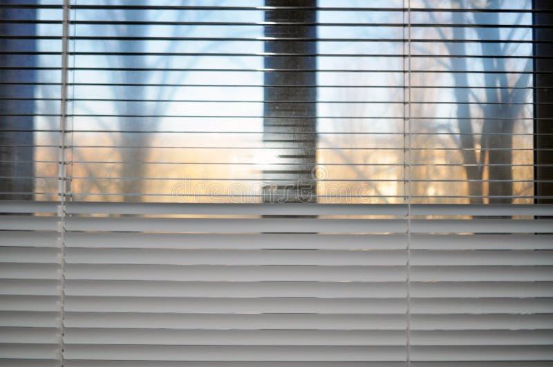 Άποψη από το παράθυρο μέσω των όχι εντελώς κλειστών τυφλών στοκ φωτογραφίες