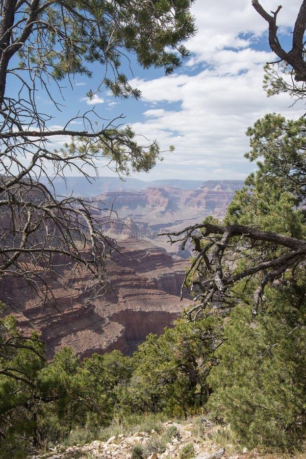 Άποψη από το υπόλοιπο του ερημίτη στο νότιο πλαίσιο του μεγάλου εθνικού πάρκου φαραγγιών στοκ φωτογραφίες με δικαίωμα ελεύθερης χρήσης