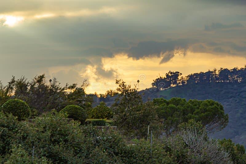 Άποψη βουνοπλαγιών του γλυπτού κήπου, βούρτσα, δέντρα, επεκτατικός ουρανός κίτρινος και χρυσός στοκ φωτογραφίες με δικαίωμα ελεύθερης χρήσης