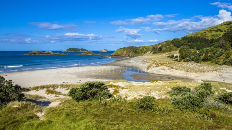 Άποψη Ειρηνικών Ωκεανών στα κεφάλια Whangarei στοκ φωτογραφίες με δικαίωμα ελεύθερης χρήσης