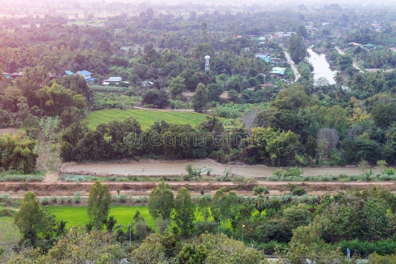 Άποψη επάνω από τα ταϊλανδικά γεωργικά δέντρα στοκ εικόνα με δικαίωμα ελεύθερης χρήσης