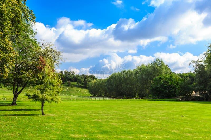 Άποψη επαρχίας του πράσινου τομέα το μήλο καλύπτει το δέντρο ήλιων φύσης λιβαδιών τοπίων λουλουδιών στοκ φωτογραφίες