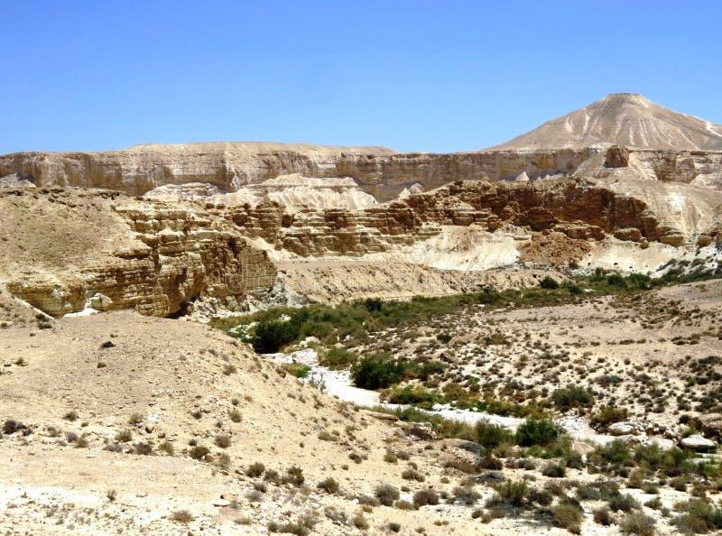 Άποψη ερήμων στοκ φωτογραφίες