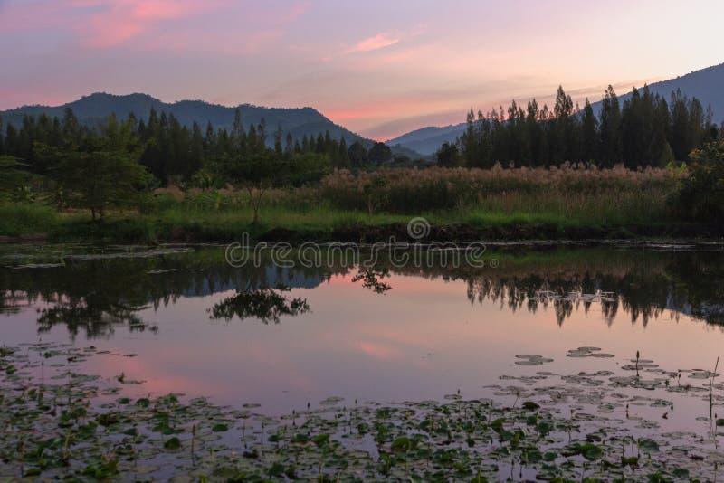Άποψη ηλιοβασιλέματος αιχμών βουνών με την αντανάκλαση στο έλος στο twili στοκ φωτογραφία