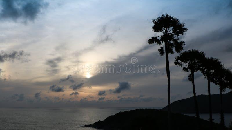 Άποψη ηλιοβασιλέματος με την ψηλή σκιαγραφία δέντρων στο νησί Phuket, Ταϊλάνδη στοκ εικόνες με δικαίωμα ελεύθερης χρήσης