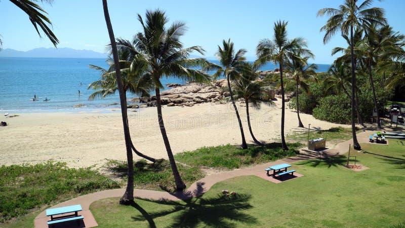 Άποψη θάλασσας με τους φοίνικες και τους βράχους surfers στοκ φωτογραφίες