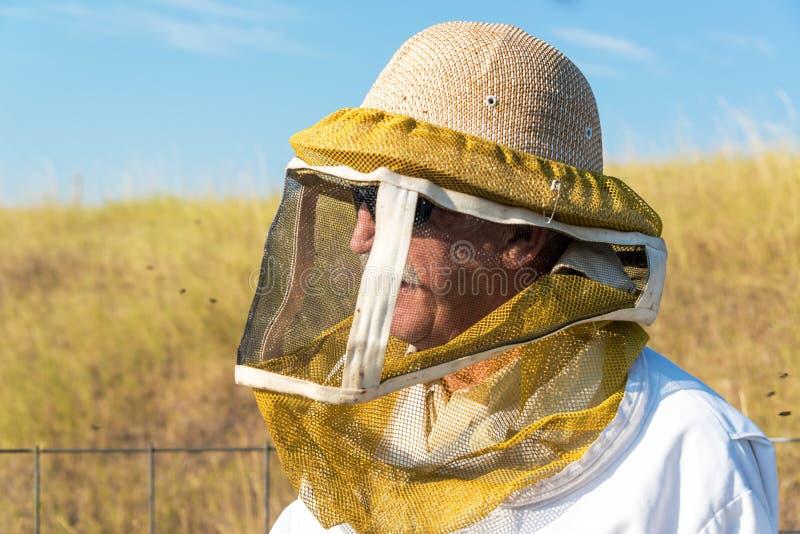 Άποψη κινηματογραφήσεων σε πρώτο πλάνο μελισσοκόμων στοκ φωτογραφίες με δικαίωμα ελεύθερης χρήσης