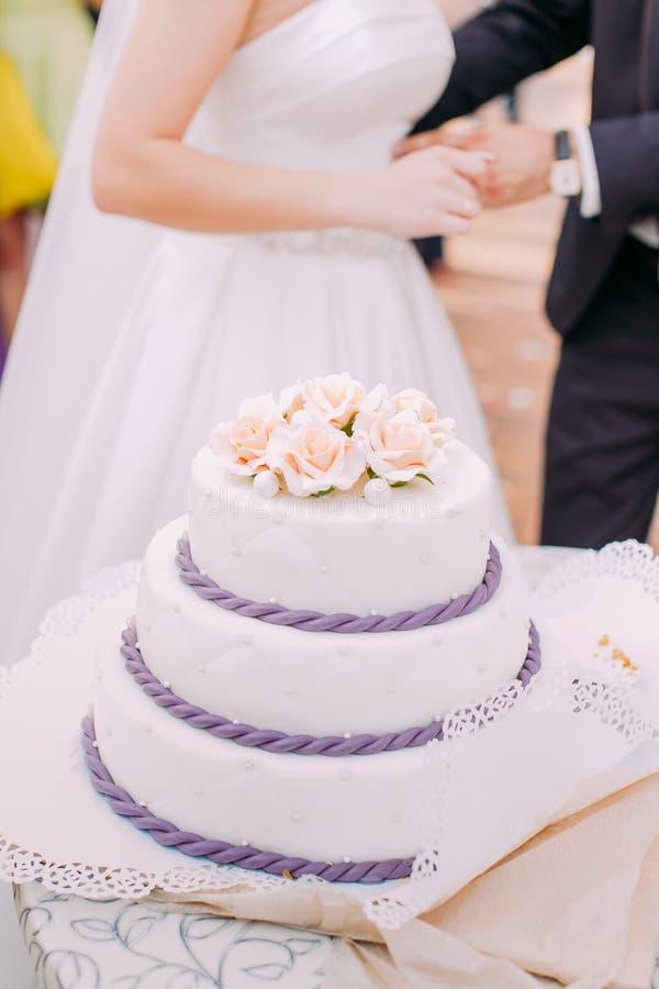 Άποψη κινηματογραφήσεων σε πρώτο πλάνο του τεράστιου άσπρου γαμήλιου κέικ που διακοσμείται με τα μικρά τριαντάφυλλα στοκ εικόνες με δικαίωμα ελεύθερης χρήσης