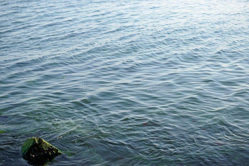 Άποψη κινηματογραφήσεων σε πρώτο πλάνο των κυματισμών νερού με το mossy βράχο στην μπλε επιφάνεια θάλασσας στοκ εικόνα με δικαίωμα ελεύθερης χρήσης
