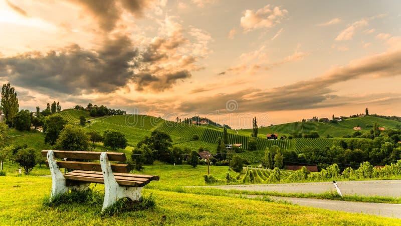 Άποψη λόφων και βουνών σταφυλιών από την οδό κρασιού στο Styria, την Αυστρία & x28  Sulztal Weinstrasse & x29  το καλοκαίρι στοκ φωτογραφίες με δικαίωμα ελεύθερης χρήσης