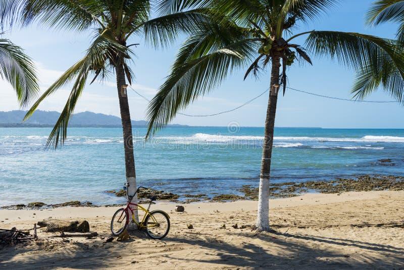 Άποψη μιας παραλίας με τους φοίνικες σε Puerto Viejo de Talamanca, Κόστα Ρίκα στοκ φωτογραφία με δικαίωμα ελεύθερης χρήσης