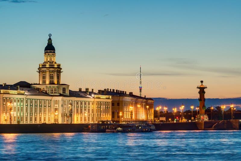 Άποψη νύχτας του αναχώματος Neva στη Αγία Πετρούπολη στοκ φωτογραφίες με δικαίωμα ελεύθερης χρήσης