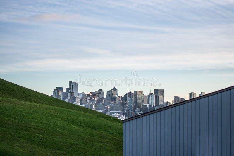 Άποψη οριζόντων του Σιάτλ από ένα πάρκο στοκ φωτογραφία με δικαίωμα ελεύθερης χρήσης