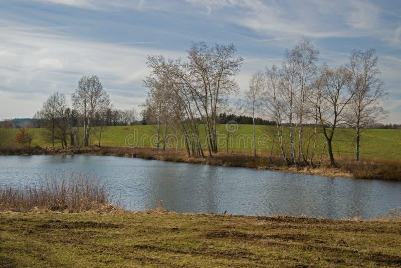 Άποψη πέρα από τη λίμνη/τη λίμνη Bachracek την άνοιξη Μπλε νερό και ουρανός, πράσινος τομέας, threes στοκ εικόνα με δικαίωμα ελεύθερης χρήσης