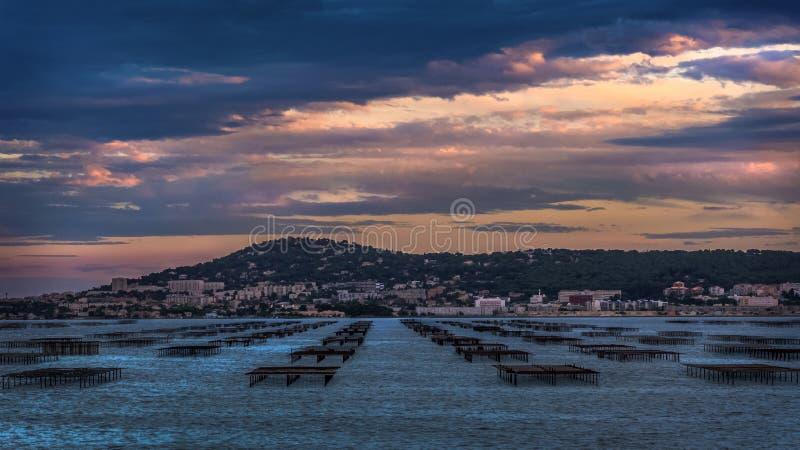 Άποψη πέρα από τους πίνακες στρειδιών Etang de Thau Bouzigues Γαλλία στοκ εικόνες