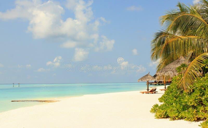 Άποψη παραλιών των Μαλδίβες στοκ φωτογραφία με δικαίωμα ελεύθερης χρήσης