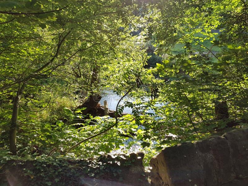 Άποψη ποταμών από μια παλαιά γέφυρα πετρών στοκ φωτογραφία με δικαίωμα ελεύθερης χρήσης