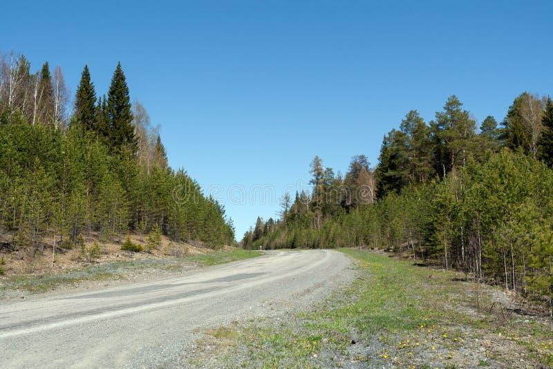 Άποψη προοπτικής του δρόμου, που ανέρχεται στην κλίση στο δάσος την άνοιξη στοκ φωτογραφίες