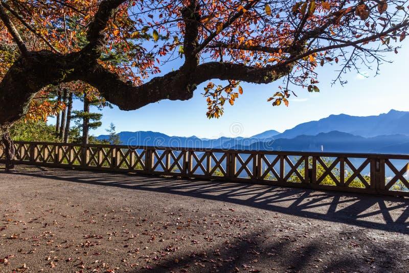Άποψη πρωινού από το πεζούλι κάτω από το πορτοκαλί δέντρο του βουνού Zhushan στοκ φωτογραφίες