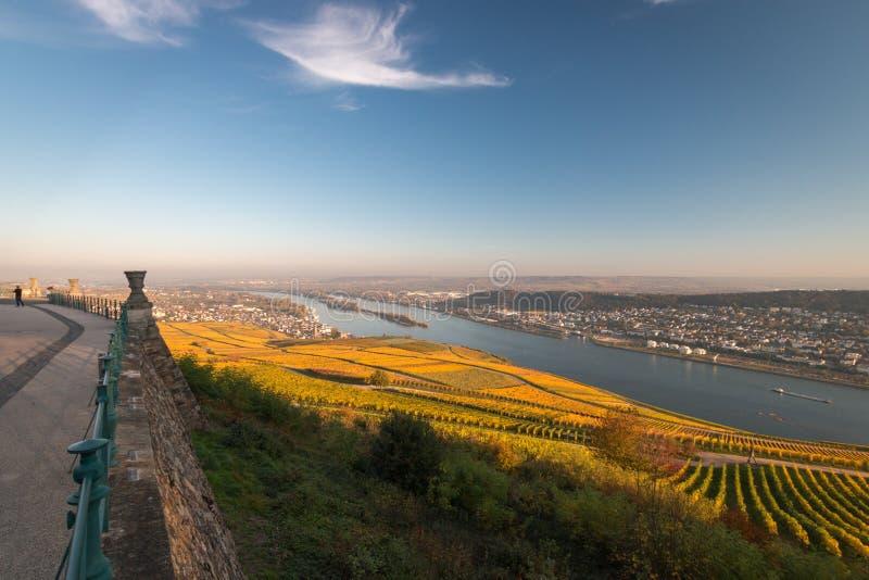 Άποψη σε Rheingau, Bingen και Rheinhessen στοκ εικόνες