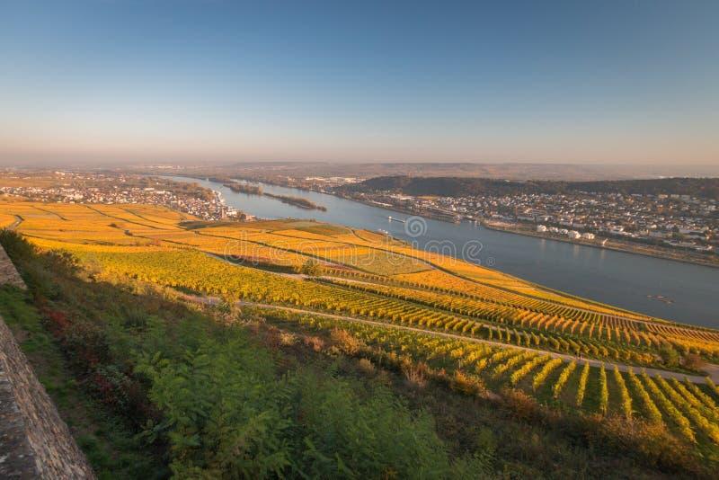 Άποψη σε Rheingau, Bingen και Rheinhessen στοκ φωτογραφία με δικαίωμα ελεύθερης χρήσης
