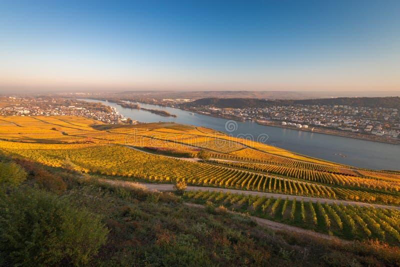 Άποψη σε Rheingau, Bingen και Rheinhessen στοκ φωτογραφίες με δικαίωμα ελεύθερης χρήσης