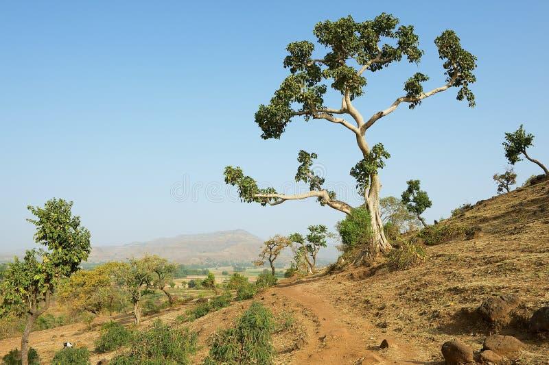 Άποψη στο ίχνος βουνών σε Bahir Dar, Αιθιοπία στοκ εικόνα