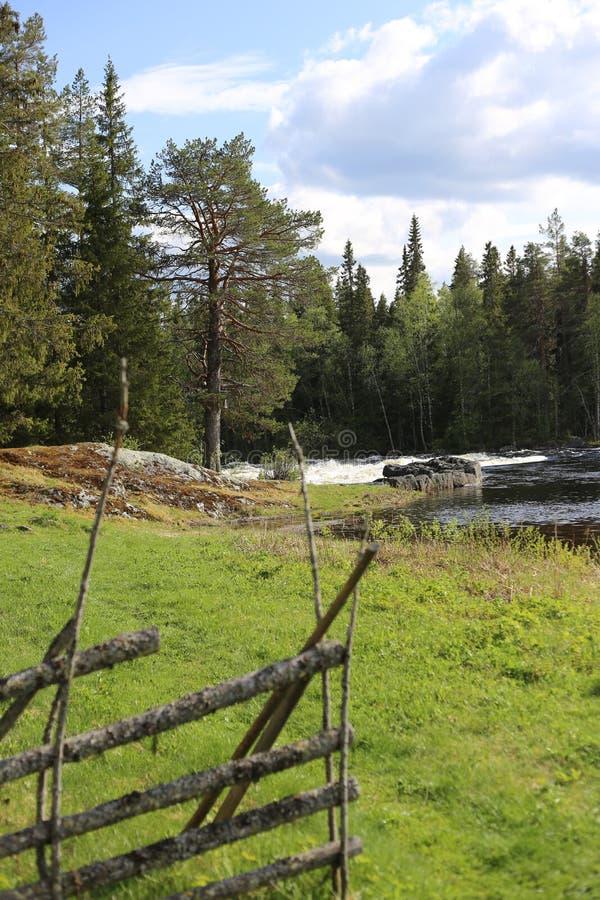 Άποψη σχετικά με έναν χορτοτάπητα εκτός από το σουηδικό ποταμό Ammerasn στοκ φωτογραφία