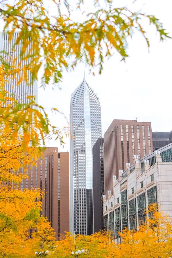 Άποψη σχετικά με τον ουρανοξύστη από το πάρκο στοκ εικόνες