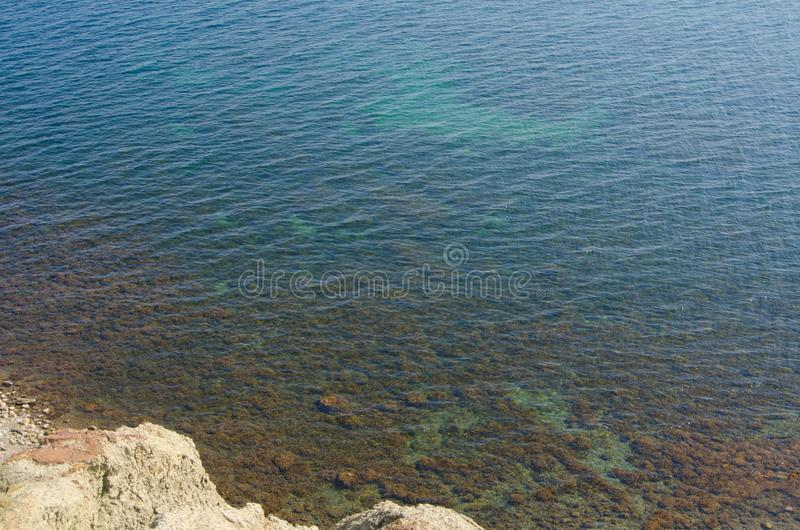 Άποψη σχετικά με το διαφανές τυρκουάζ θαλάσσιο νερό με το φύκι στοκ φωτογραφία
