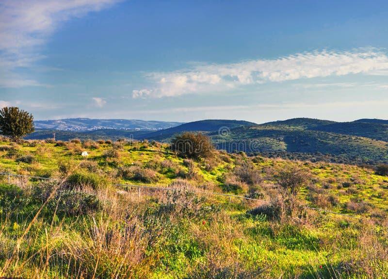 Άποψη σχετικά με το πράσινο βιβλικό τοπίο και τις αρχαιολογικές καταστροφές Beit Guvrin Maresha κατά τη διάρκεια του χειμώνα, Ισρ στοκ φωτογραφία με δικαίωμα ελεύθερης χρήσης