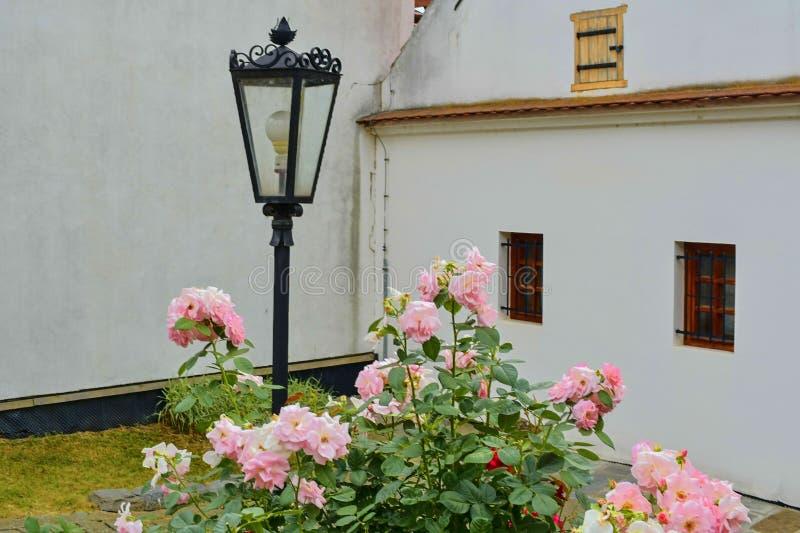 Άποψη σχετικά με το ρομαντικό αστικό τοπίο Ιστορικό αστικό κατώφλι με έναν θάμνο των τριαντάφυλλων και του κλασσικού φωτισμού στοκ εικόνες με δικαίωμα ελεύθερης χρήσης