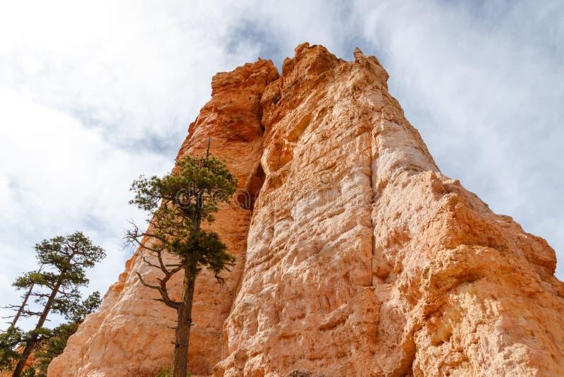 Άποψη σχηματισμού Hoodoo φαραγγιών του Bryce από το πάτωμα κοιλάδων στοκ φωτογραφίες με δικαίωμα ελεύθερης χρήσης