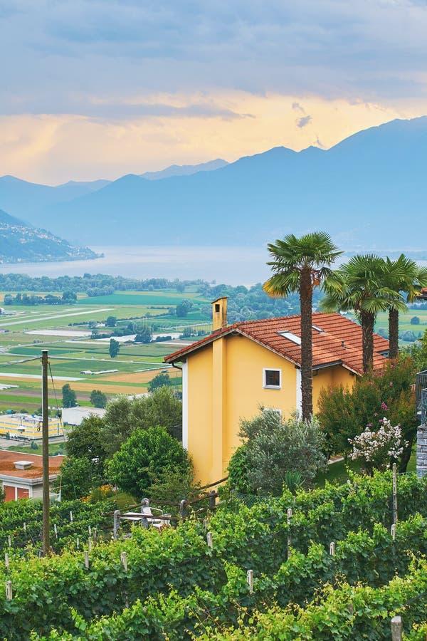 Άποψη της αγροτικής νότιας Ελβετίας με τα σπίτια, τα αγροκτήματα, τους αμπελώνες, τα βουνά και τη λίμνη Maggiore ορών στοκ φωτογραφία
