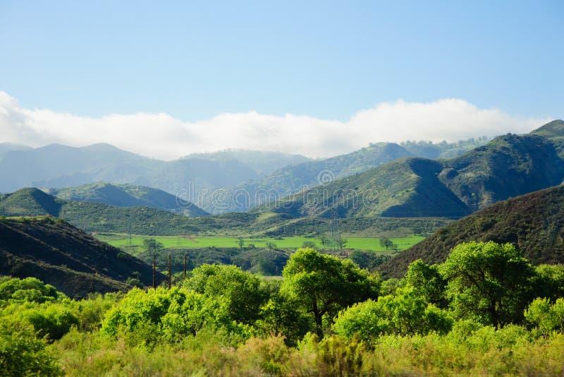 Άποψη της βουνοπλαγιάς σε μια βόρεια Καλιφόρνια Ο ήλιος χρωμάτισε τα στρογγυλά διαμορφωμένα δέντρα με τις καταπληκτικές όμορφες α στοκ εικόνες